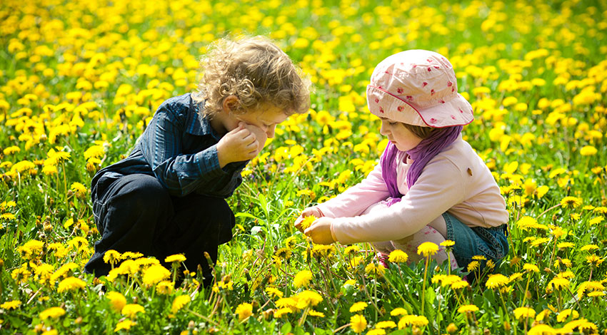 Young children in a field of wildflowers