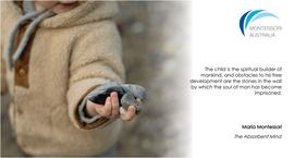 Child holding pebble