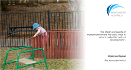 Child outdoors on climbing frame