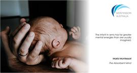 Newborn baby's head cradled in father's hands